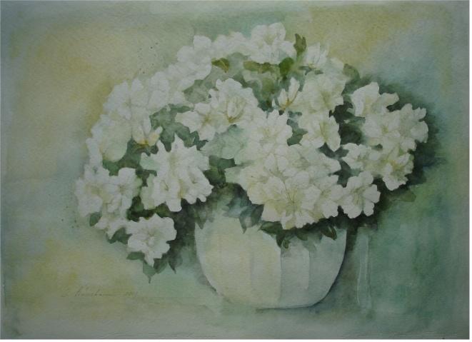Blütentraum in Weiß